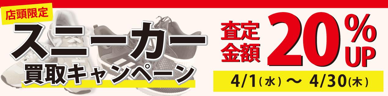 スニーカー20%UPキャンペーン!